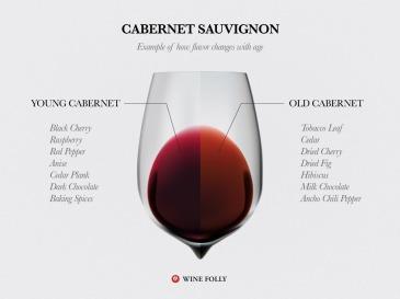 Cabernet-Sauvignon-Taste-aging-wine