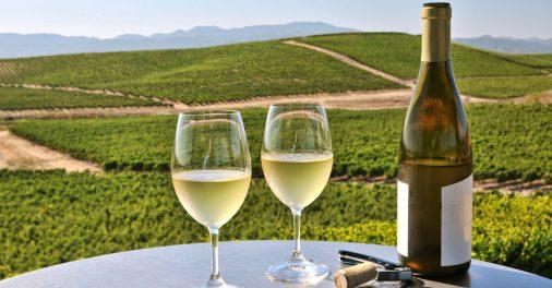 Chardonnay-social